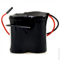 Batteria al Litio 2CR123A PANASONIC 3V 2,9Ah con cavi per porte automatiche CARDIN CRR841E00